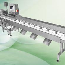 水产品、禽类副产品多级重量分选机304不锈钢
