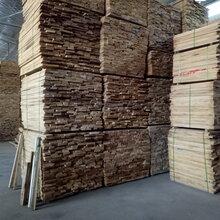 销售俄罗斯进口曲柳、桦木、柞木烘干板材及3米、4米原木、刨切材图片