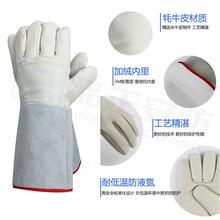 LNG液氮牛皮手套新雪丽材质液氮防护手套批发厂家图片