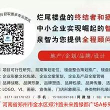 泉智企划669x编写可研报告工程营销策划咨询