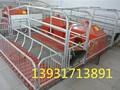 泊头永质养猪设备生产保育栏,保育床,自动喂料系统图片