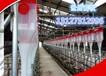 自動化喂豬設備料線主機傳動系統上料現代化豬場使用自動化料線規格