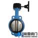 D371X涡轮对夹衬胶蝶阀图纸,CAD,尺寸能恩阀门