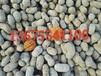 南汇陶粒(136-7554-1106)南汇建筑陶粒价格