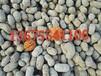 万全陶粒在哪买136-7554-1106建筑陶粒型号1-3cm