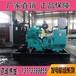 东风康明斯50KW柴油发电机组电调泵