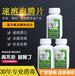 绿丁居家消毒片泡腾片环境消毒高效杀菌漂白除臭速溶片84消毒液