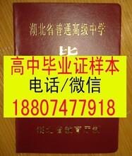 湖北省高中毕业证模板图片