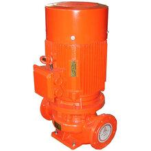 上海舜隆泵业供应XBD-L型立式单级消防泵