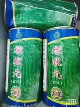 池州特長豆角種子圖片
