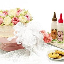 天然裱花蛋糕专用色素