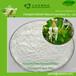 物优价廉金银花提取物;绿原酸5%-98%