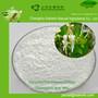 物优价廉金银花提取物;绿原酸5%-98%图片