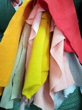 针织罗纹布料1x1库存批发袖口领口针织罗纹布料纯色