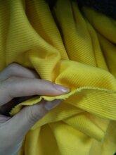 品牌尾单颜色多卷布布头针织罗纹布料纯色针织罗纹布料1x1