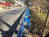 供应镀锌热喷塑护栏网焦作郑州新乡厂家直销