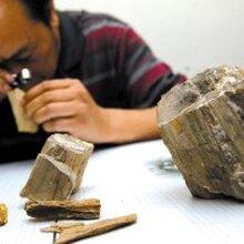 古董,古玩,艺术品鉴定评估出手公开拍卖