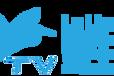 企业直播、小程序、微电影、宣传片