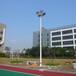 桂林市专业生产LED路灯杆双臂道路照明灯杆路边镀锌灯杆质量好