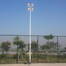 柏克体育篮球场灯杆led照明灯杆镀锌灯杆厂家图片