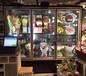 中意创展---福建南平保鲜冰柜花店专用鲜花店冰柜