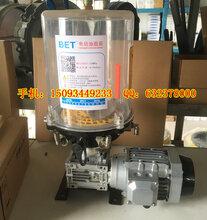 工程机械电动润滑油泵搅拌机自动润滑黄油泵价格图片