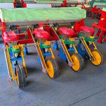 黑龙江精播玉米播种机新型玉米播种机价格图片