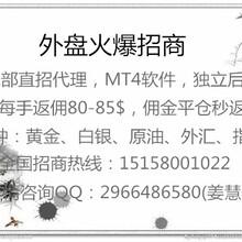 晋峰环球代理招商加盟