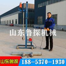 龙门架式电动打井机220V两相电可折叠电动水井钻机小型挖井机图片