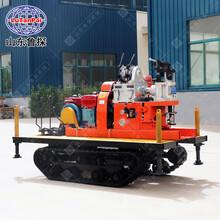 山东鲁探YQZD-30履带式液压轻便钻机率地质勘探设备