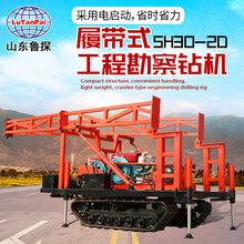 履带款砂金矿勘察钻机SH30-2D沙土取样钻机图片