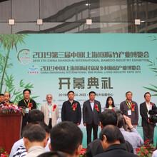 中国(上海)民宿博览会展位预定图片