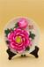 北京陶瓷花上海喬遷之喜送什么