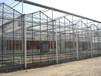 阳光板智能连栋温室大棚