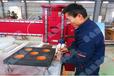 畢節全自動數控開料機板式家具開料機質量保證廠家直銷