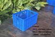 佛山喬豐塑膠廠家直銷周轉籮水果筐蔬菜筐塑膠筐收納筐收納籮