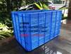 佛山喬豐塑膠廠家直銷周轉籮塑膠籮塑膠筐水果筐蔬菜筐收納筐
