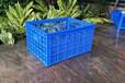 佛山喬豐塑膠廠家直銷蔬菜筐水果筐塑膠筐塑膠筐收納筐