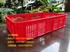 佛山喬豐塑膠廠家直銷周轉籮蔬菜筐水果筐塑膠筐