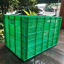 厂家直销佛山乔丰塑胶砂糖桔框塑胶筐蔬菜框塑料框