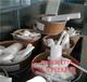 富陽四氟刨花回收富陽PVDF廢料回收報價工廠