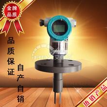 濟寧艾普信音叉密度計APX301現貨貼牌定制振動式密度計圖片