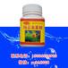 觀賞魚魚藥日本黃粉治療爛腮爛鰭爛尾腸炎