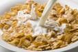 早餐蔬菜水果谷物片加工设备营养早餐粥蔬菜设备玉米片生产线