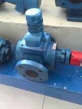 齿轮泵与您一起建设完善设施用泊头市翼扬泵业产品是第一步