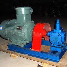 圆弧齿轮泵被打造为用户第一备选产品,泊头市翼扬泵业制造商功不可没