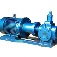 供应HMY磁力驱动齿轮泵专业设计