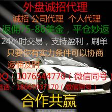 韦德外汇招商(官方网站)