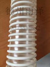 德州雨泽塑胶贸易股份有限公司供应吸尘软管。pu软管等系列图片