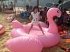 东莞峰云塑胶制品有限公司批发新款式PVC火烈鸟玩具